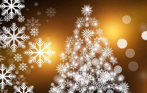 Article Bio Cadeaux Noel