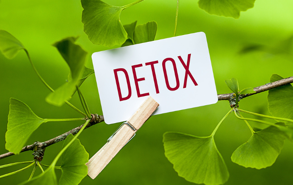 Article Bio Complements Alimentaires Detox