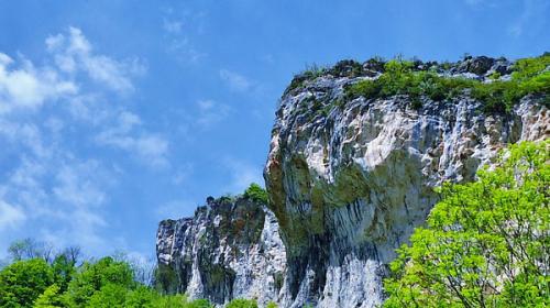Le Bio Made In Auvergne – Rhône-Alpes