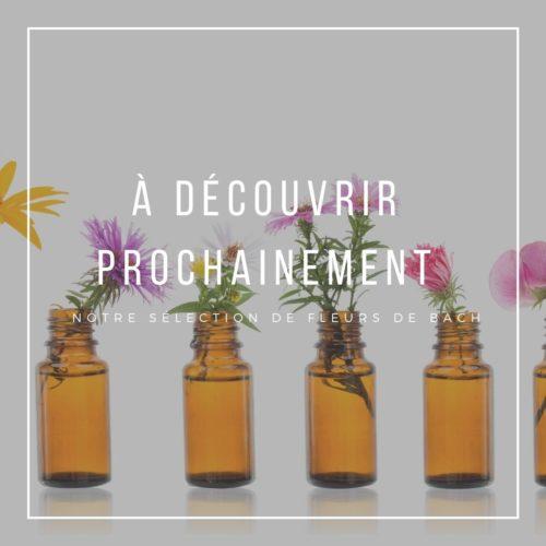 Fleurs De Bach La Ptite Maison Du Bio