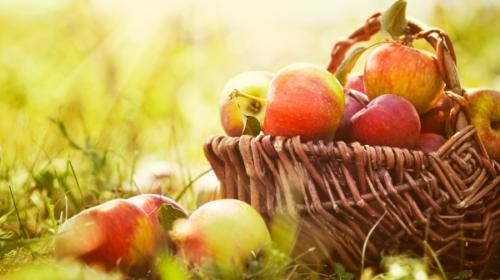10 Fruits & Légumes D'automne !