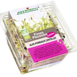 Graines Germées Fraiches Bio Alfalfa/poireau/lentilles