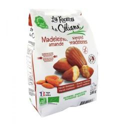 Madeleines Amande Sans Gluten